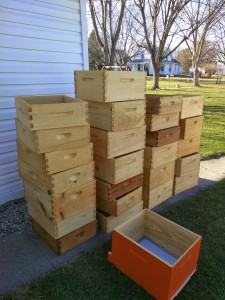 Completed dipped hives